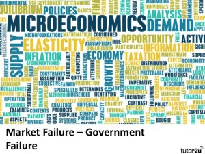 government-failure